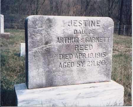 REED, JESTINE - Meigs County, Ohio   JESTINE REED - Ohio Gravestone Photos