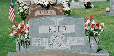 REED, ALVIN - Meigs County, Ohio | ALVIN REED - Ohio Gravestone Photos