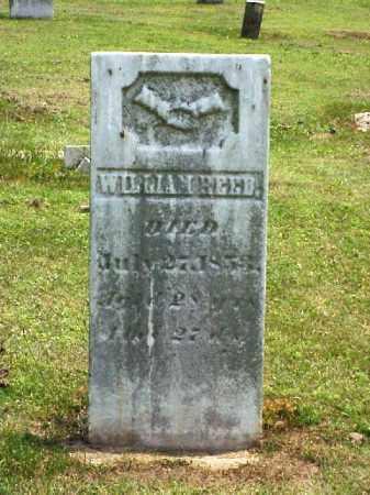 REED, WILLIAM - Meigs County, Ohio | WILLIAM REED - Ohio Gravestone Photos