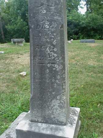 REES, ELIZABETH - Meigs County, Ohio | ELIZABETH REES - Ohio Gravestone Photos