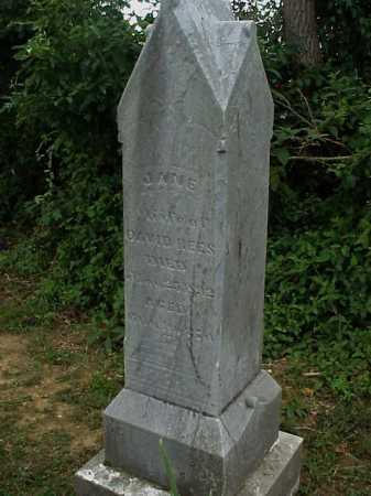REES, JANE - Meigs County, Ohio   JANE REES - Ohio Gravestone Photos