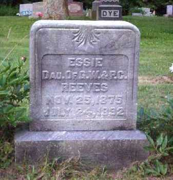 REEVES, ESSIE - Meigs County, Ohio | ESSIE REEVES - Ohio Gravestone Photos