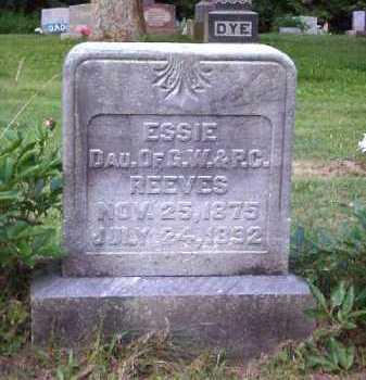 REEVES, ESSIE - Meigs County, Ohio | ESSIE REEVES - Ohio Gravestone Photos