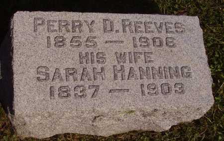 HANNING REEVES, SARAH - Meigs County, Ohio | SARAH HANNING REEVES - Ohio Gravestone Photos