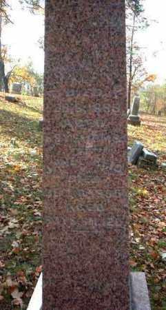 REID, ANDREW - Meigs County, Ohio | ANDREW REID - Ohio Gravestone Photos