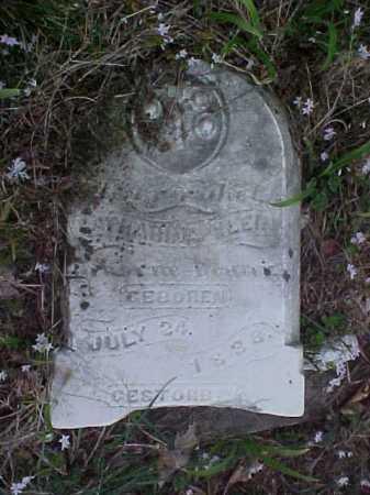 KLEIN REUTER, CATHERINE - Meigs County, Ohio | CATHERINE KLEIN REUTER - Ohio Gravestone Photos