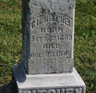 RICHEY, WM. - Meigs County, Ohio | WM. RICHEY - Ohio Gravestone Photos