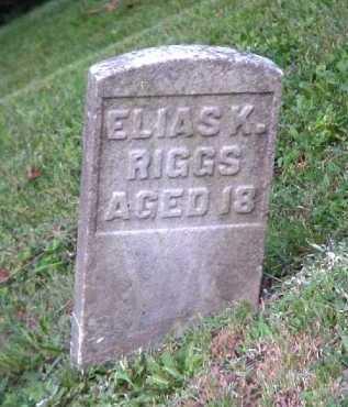 RIGGS, ELIAS K. - Meigs County, Ohio   ELIAS K. RIGGS - Ohio Gravestone Photos