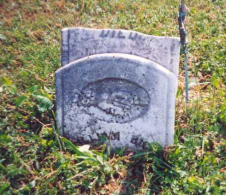 RIGGS, WILLIAM - Meigs County, Ohio | WILLIAM RIGGS - Ohio Gravestone Photos