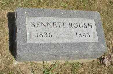 ROUSH, BENNETT - Meigs County, Ohio | BENNETT ROUSH - Ohio Gravestone Photos