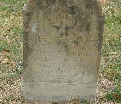 ROUSH, MICHAEL - Meigs County, Ohio | MICHAEL ROUSH - Ohio Gravestone Photos