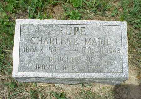 RUPE, CHARLENE MARIE - Meigs County, Ohio | CHARLENE MARIE RUPE - Ohio Gravestone Photos