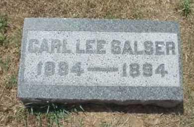 SALSER, CARL LEE - Meigs County, Ohio | CARL LEE SALSER - Ohio Gravestone Photos