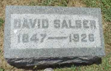 SALSER, DAVID - Meigs County, Ohio   DAVID SALSER - Ohio Gravestone Photos