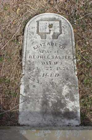 SALSER, ELIZABETH - Meigs County, Ohio | ELIZABETH SALSER - Ohio Gravestone Photos