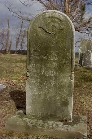 SALSER, GEORGE - Meigs County, Ohio | GEORGE SALSER - Ohio Gravestone Photos