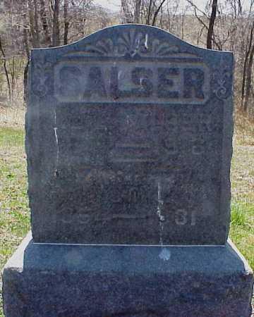 SALSER, HENRIETTA - Meigs County, Ohio | HENRIETTA SALSER - Ohio Gravestone Photos