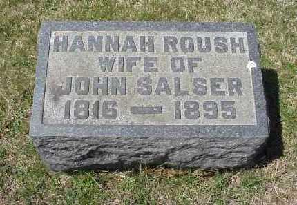 ROUSH SALSER, HANNAH ROUSH - Meigs County, Ohio | HANNAH ROUSH ROUSH SALSER - Ohio Gravestone Photos