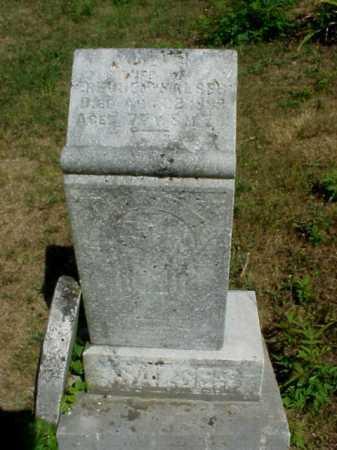 SALSER, JULIA - Meigs County, Ohio | JULIA SALSER - Ohio Gravestone Photos