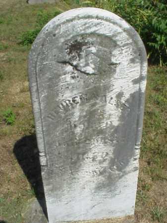 SALSER, REUBEN - Meigs County, Ohio | REUBEN SALSER - Ohio Gravestone Photos