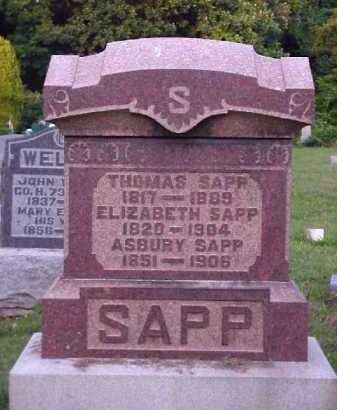 FREED SAPP, ELIZABETH - Meigs County, Ohio   ELIZABETH FREED SAPP - Ohio Gravestone Photos