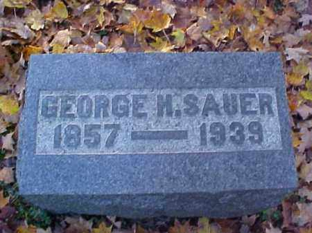 SAUER, GEORGE H. - Meigs County, Ohio | GEORGE H. SAUER - Ohio Gravestone Photos