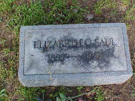 SAUL, ELIZABETH C. - Meigs County, Ohio | ELIZABETH C. SAUL - Ohio Gravestone Photos