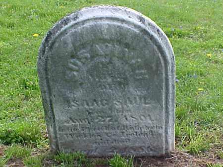 SAUL, SUSANNAH - Meigs County, Ohio | SUSANNAH SAUL - Ohio Gravestone Photos