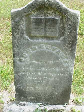 SAVAGE, JOHN - Meigs County, Ohio | JOHN SAVAGE - Ohio Gravestone Photos