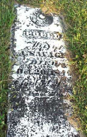 HUBBELL SAVAGE, POLLY - Meigs County, Ohio | POLLY HUBBELL SAVAGE - Ohio Gravestone Photos