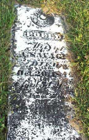 SAVAGE, POLLY - Meigs County, Ohio | POLLY SAVAGE - Ohio Gravestone Photos