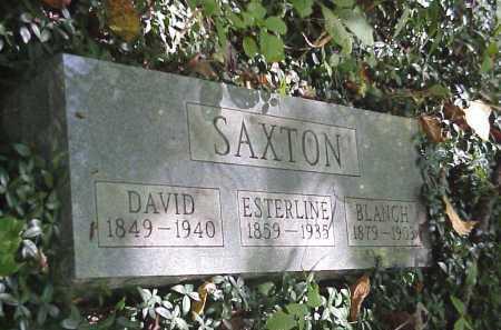 SAXTON, DAVID - Meigs County, Ohio | DAVID SAXTON - Ohio Gravestone Photos