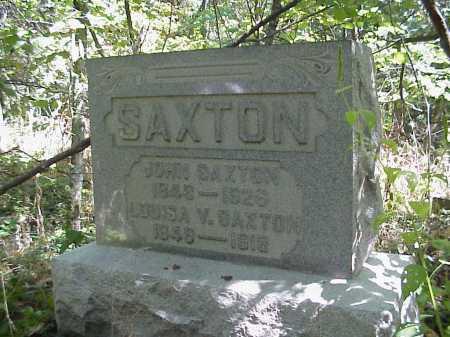 SAXTON, LOUISA V. - Meigs County, Ohio | LOUISA V. SAXTON - Ohio Gravestone Photos