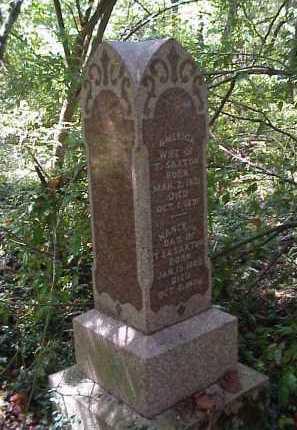 SAXTON, NANCY J. - Meigs County, Ohio | NANCY J. SAXTON - Ohio Gravestone Photos