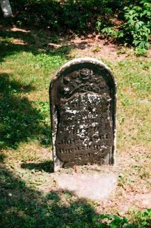 SCHEIBLEAR, SUSAN - Meigs County, Ohio   SUSAN SCHEIBLEAR - Ohio Gravestone Photos