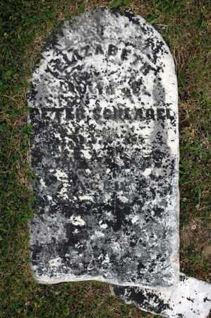 SCHLAGEL, ELIZABETH - Meigs County, Ohio | ELIZABETH SCHLAGEL - Ohio Gravestone Photos