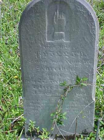 SCHREIBER, PHILIP - Meigs County, Ohio   PHILIP SCHREIBER - Ohio Gravestone Photos
