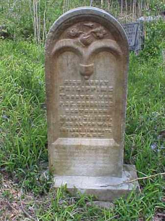 SCHREIBER, PHILIPPINE - Meigs County, Ohio | PHILIPPINE SCHREIBER - Ohio Gravestone Photos