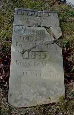 SCHREIBLEAR, ELIZABETH - Meigs County, Ohio   ELIZABETH SCHREIBLEAR - Ohio Gravestone Photos