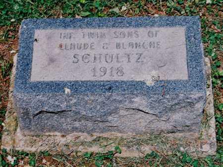 SCHULTZ, INFANT TWIN SONS - Meigs County, Ohio | INFANT TWIN SONS SCHULTZ - Ohio Gravestone Photos
