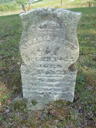 SCOTT, LOVINIA - Meigs County, Ohio   LOVINIA SCOTT - Ohio Gravestone Photos