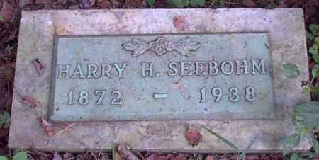 SEEBOHM, HARRY H. - Meigs County, Ohio | HARRY H. SEEBOHM - Ohio Gravestone Photos