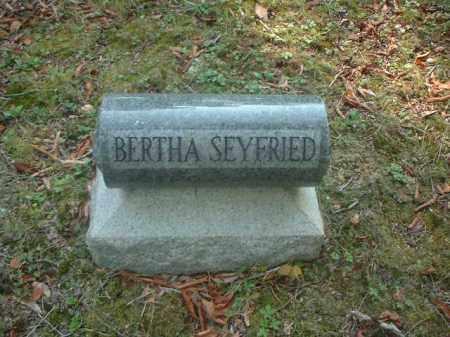 SEYFRIED, BERTHA - Meigs County, Ohio | BERTHA SEYFRIED - Ohio Gravestone Photos