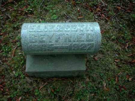 SEYFRIED, ELIZABETH - Meigs County, Ohio | ELIZABETH SEYFRIED - Ohio Gravestone Photos