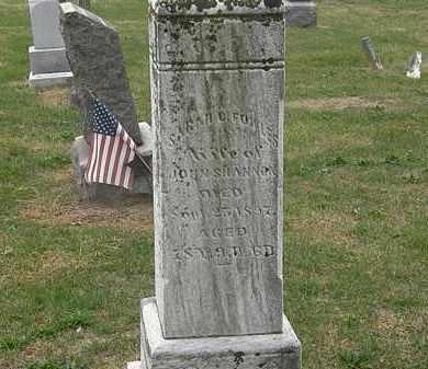 SHANNON, JOHN - Meigs County, Ohio   JOHN SHANNON - Ohio Gravestone Photos