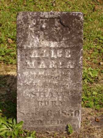 SHAW, ALICE MARIA - Meigs County, Ohio | ALICE MARIA SHAW - Ohio Gravestone Photos