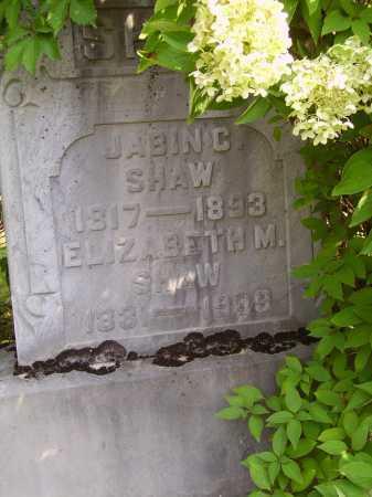 MCCLURE SHAW, ELIZABETH M. - Meigs County, Ohio | ELIZABETH M. MCCLURE SHAW - Ohio Gravestone Photos