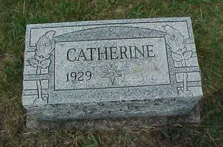 SHENEFIELD, CATHERINE - Meigs County, Ohio   CATHERINE SHENEFIELD - Ohio Gravestone Photos