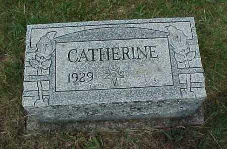 SHENEFIELD, CATHERINE - Meigs County, Ohio | CATHERINE SHENEFIELD - Ohio Gravestone Photos