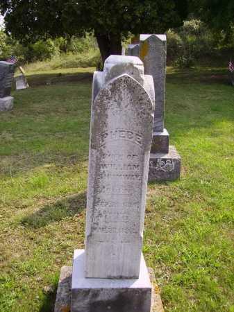 SHUMWAY, PHEBE - Meigs County, Ohio | PHEBE SHUMWAY - Ohio Gravestone Photos